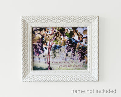 Framed print of Grapes on grapevine in vineyard with scripture verse