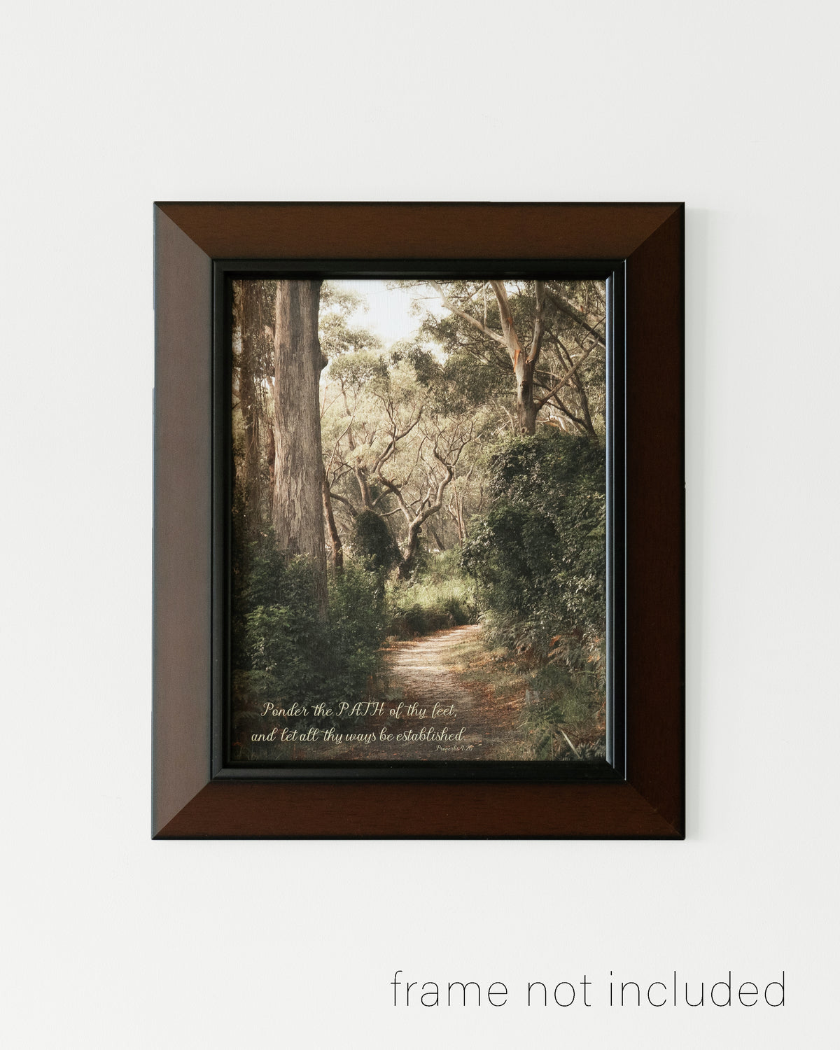 Framed print of Path of light through the Australian Bush with scripture verse