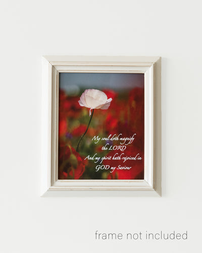 Framed print of Poppy Field with red, purple, blue, and white flowers in Enon, Ohio with scripture verse