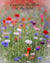 Enon Poppy Field 8 (0224-1)