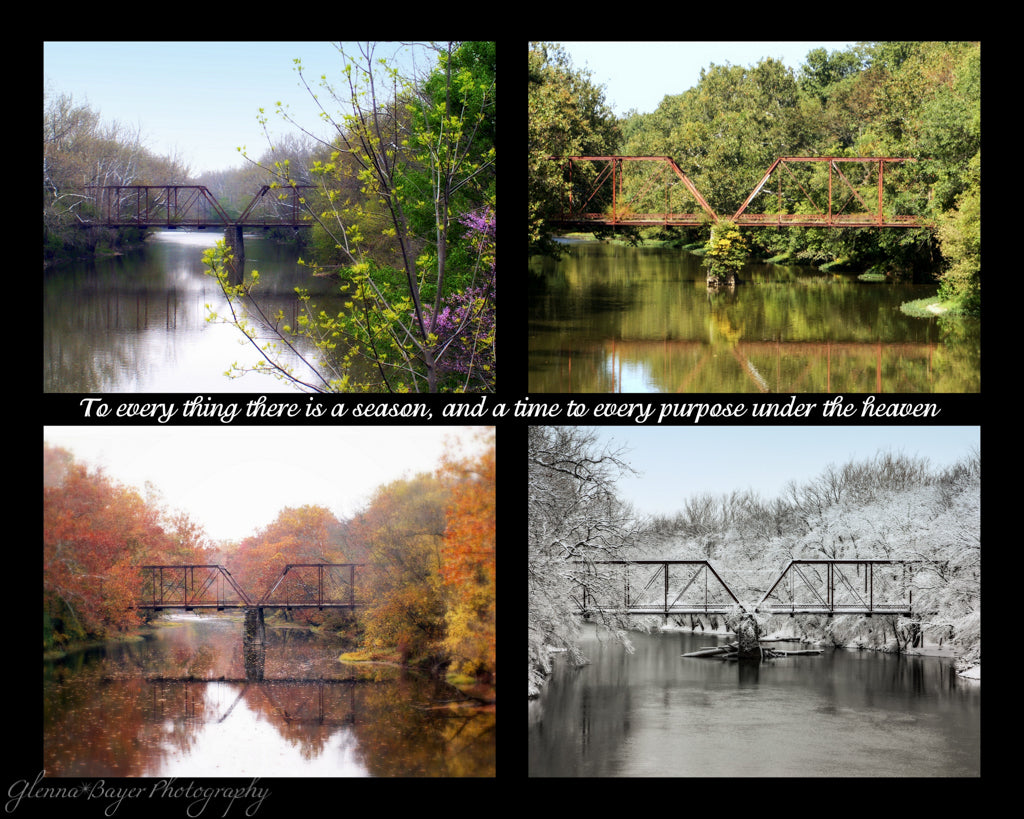 A four picture collage of the Falknor Road Bridge in the four seasons with scripture verse