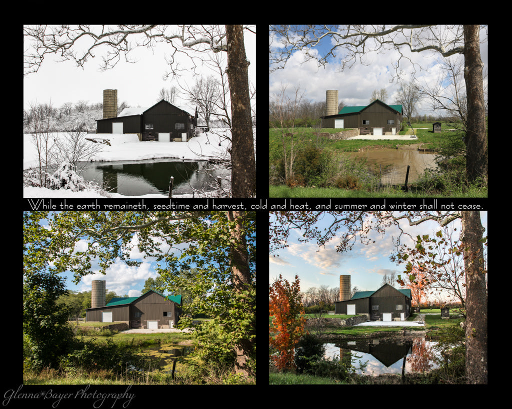 A four picture collage of a barn and pond in four seasons with scripture verse