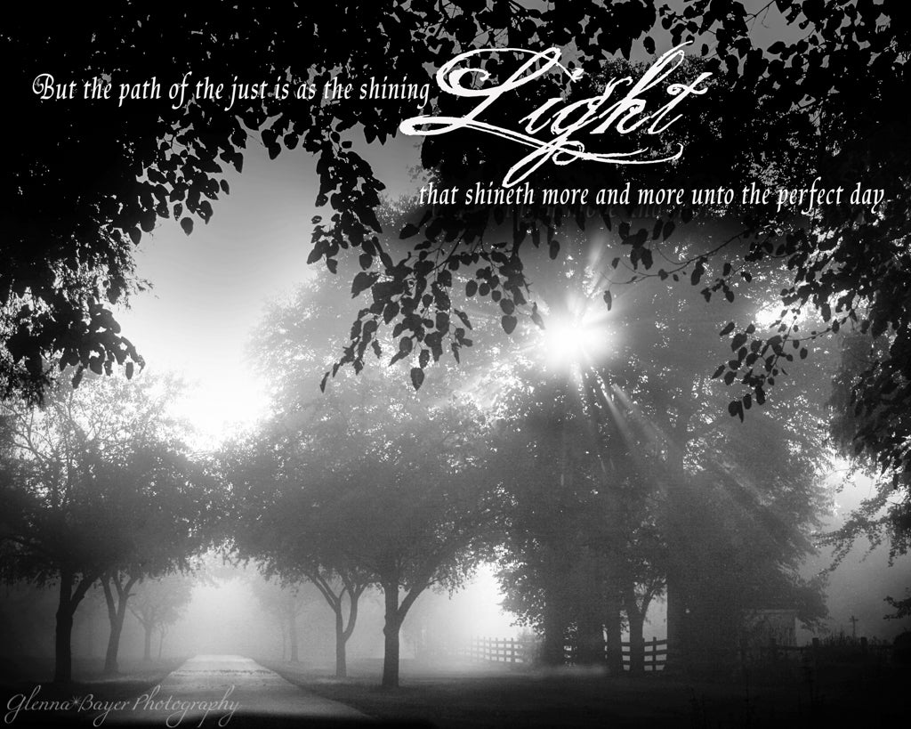 Foggy morning with sunlight shining through trees in black and white with scripture verse