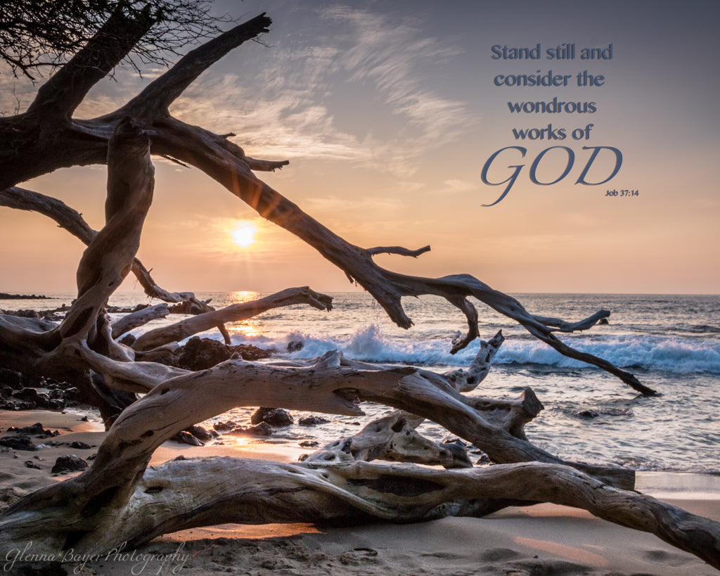 Hawaii beach at sunset with trees and scripture verse