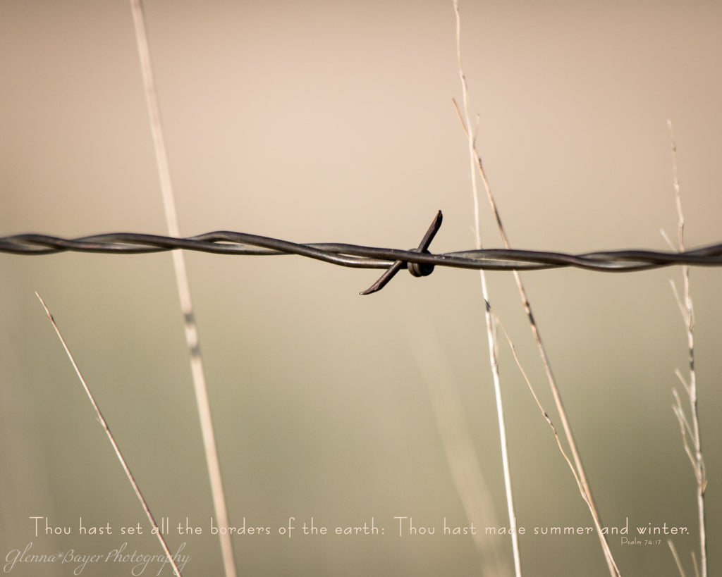 Barbed wire fence with wheat field in Kansas with scripture verse