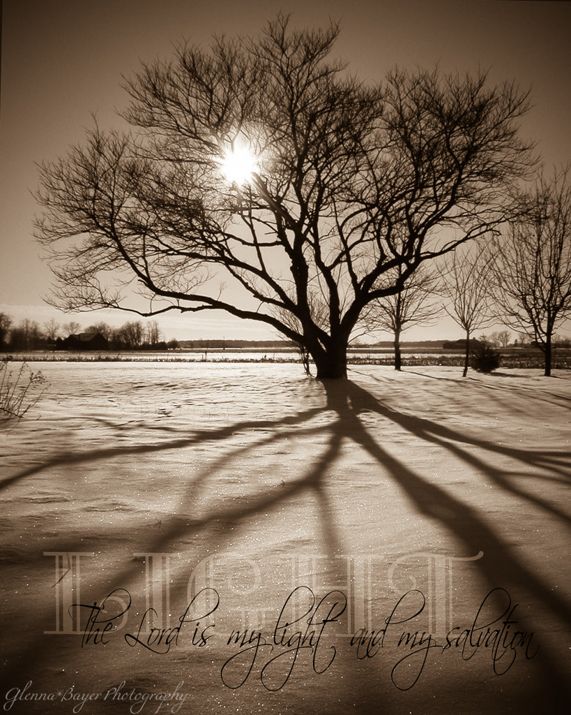 Sunburst through silhouette of tree in snow with scripture verse