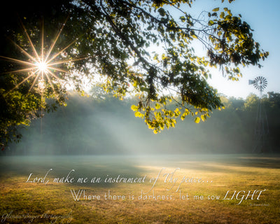 Starburst through trees and sunbeam on field in early morning with scripture verse