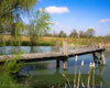 Lyle's Pond in Spring, Blue, Green, Reflection, Wooden Dock