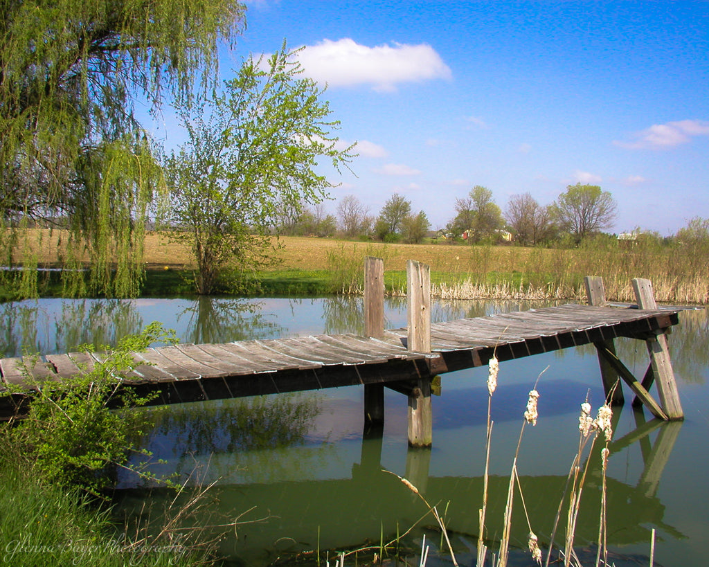 Pond with old wooden dock