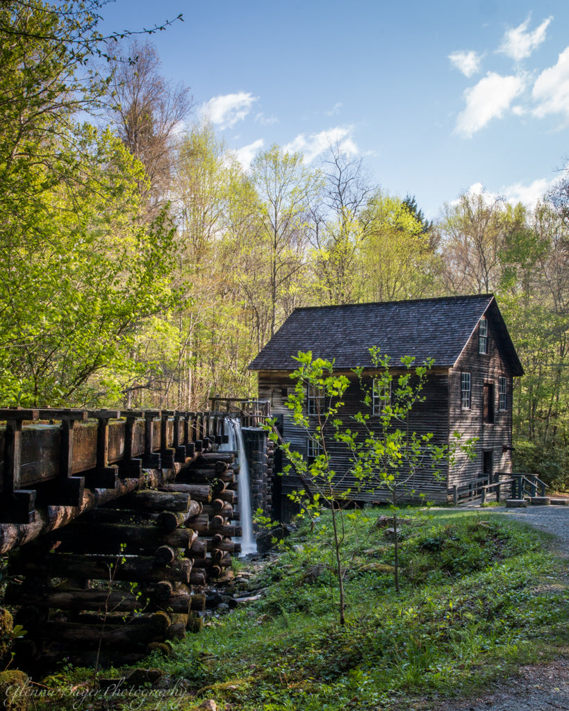 Old Mingus Mill in Swain County, North Carolina in spring