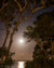 Moonrise over Jervis Bay, Australia (0209)