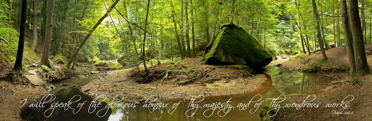 Panorama of stream through woods in summer at Old Man's Cave, Ohio with scripture verse