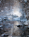 Painter Creek in Winter, Bible Verse, Snow, Blue