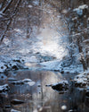 Painter Creek in Winter, Snow, Blue