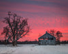 Pink Sunset, Old Wooden Barn, Snow