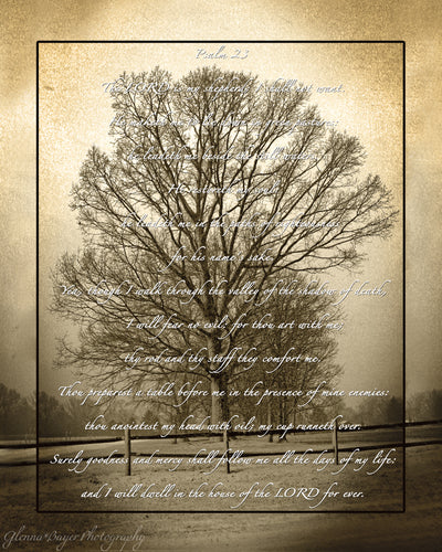 Sepia picture of tree with Psalm 23 over the image
