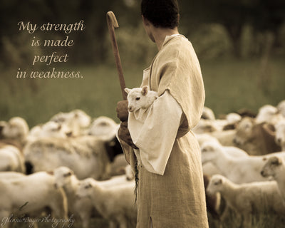 Shepherd with staff holding little lamb with flock of sheep with scripture verse