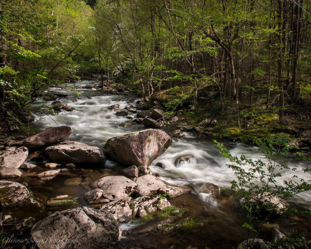 Smoky Mountain Stream flowing over rocks in summer