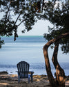 Chair on Beach in the Florida Keys, Ocean, Tree, Blue