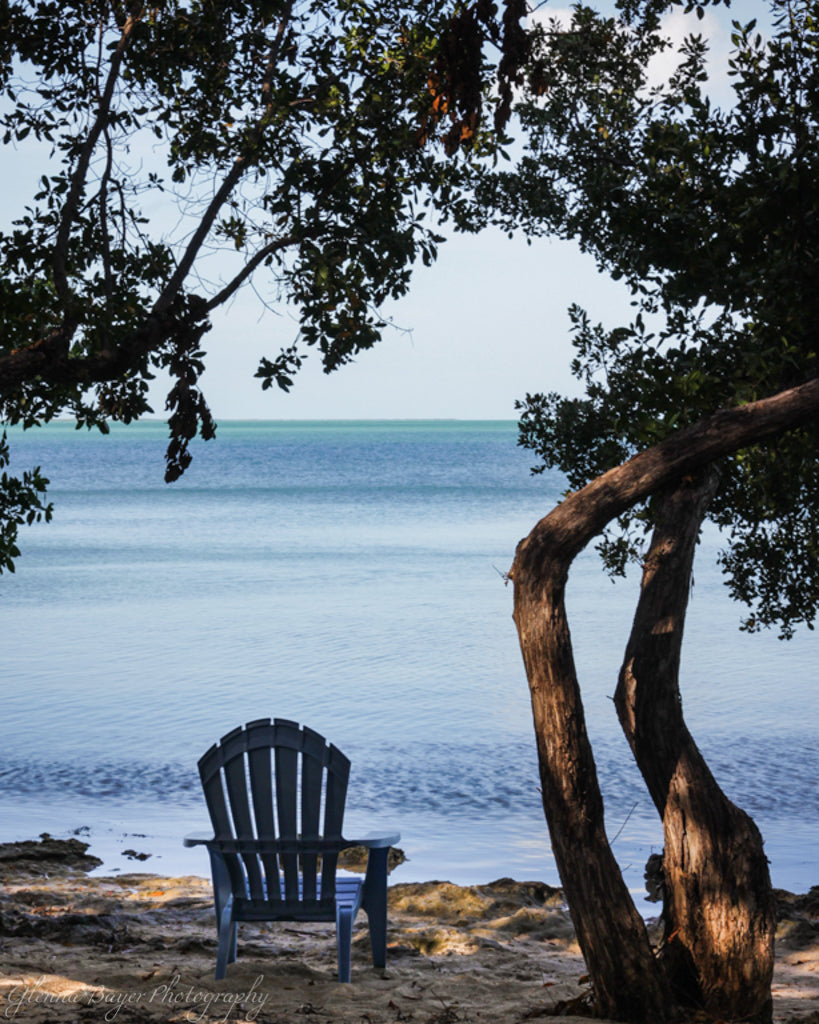 Lawn chair on beach under tree in the Florida Keys