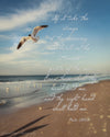 Seagull flying over beach, ocean, blue, morning, bible verse