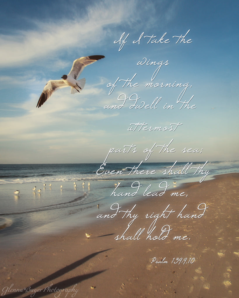 Seagull flying over beach with scripture verse