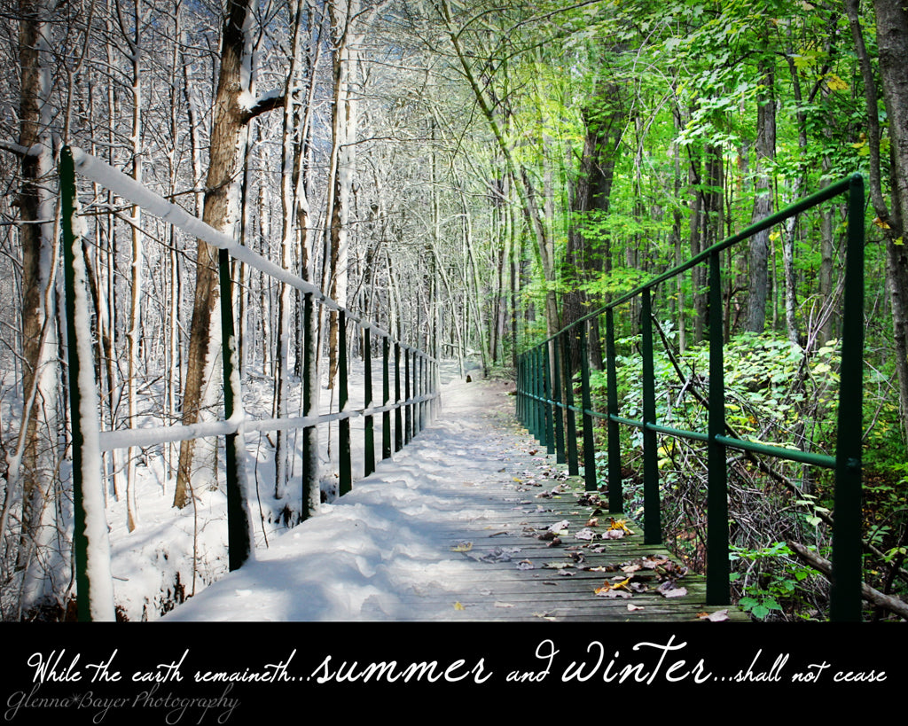 Winter to Summer collage of bridge and woods at Brukner Nature Center, Ohio with scripture verse
