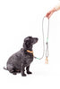 Dog & Human - Leather Poop Bag Holder