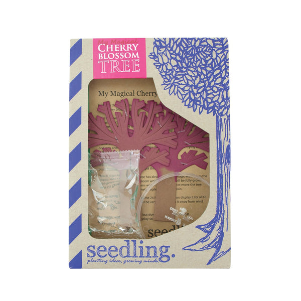 Seedling - Activity Kit