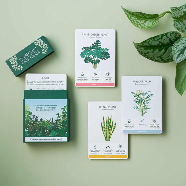 Another Studio - Plant Care Cards