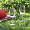 SteadySticks - Picnic Wine Stake - Set of 2