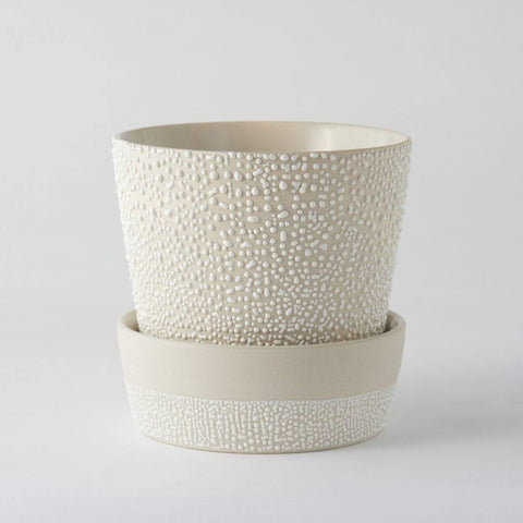 Angus & Celeste - White Water Bead - Planter Pot
