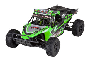 RedCat Racing, RC Truck, Baja Buggy, Electric Powered