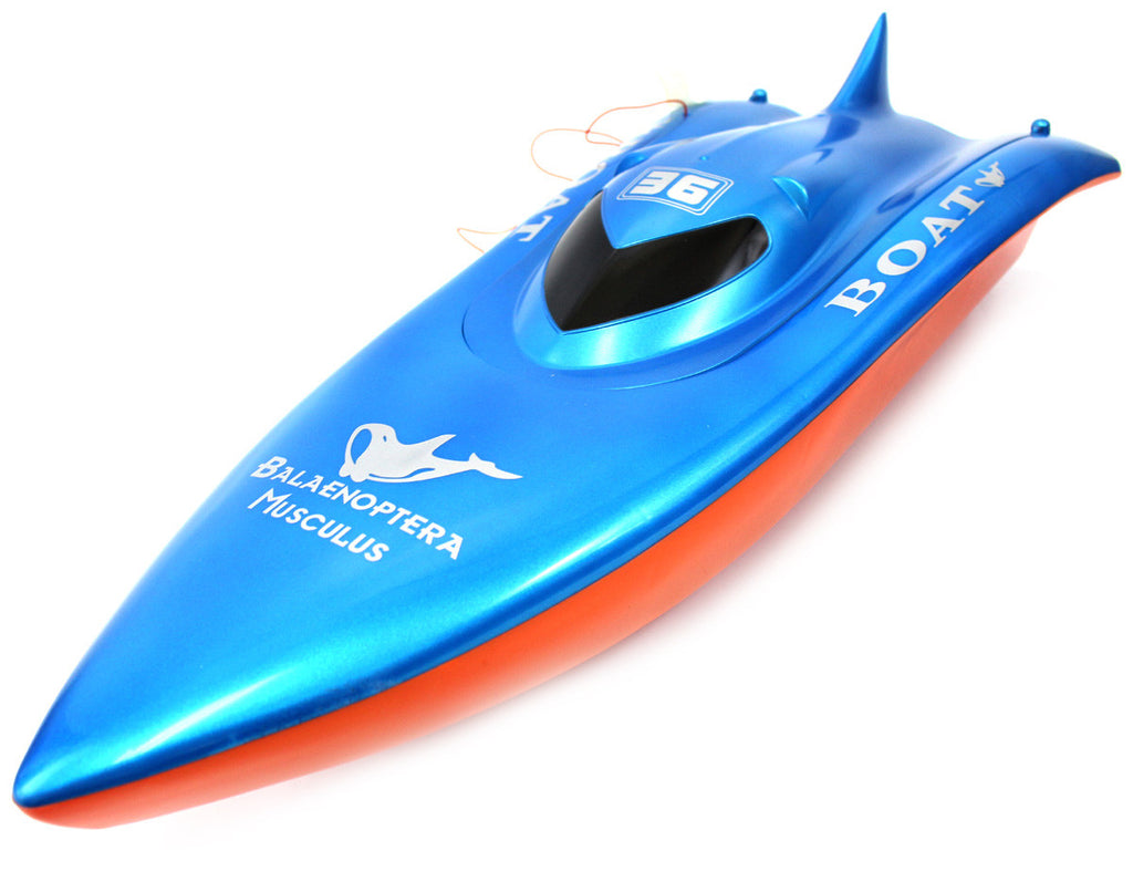 "23"" Balaenoptera Musculus Racing Boat (Red/Blue)"