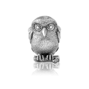 Load image into Gallery viewer, Ruru (Morepork) Silver Charm - Global Culture