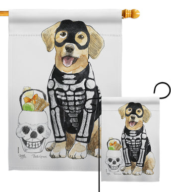 Spooky Skeleton Lab - Halloween Fall Vertical Impressions Decorative Flags HG112098 Made In USA