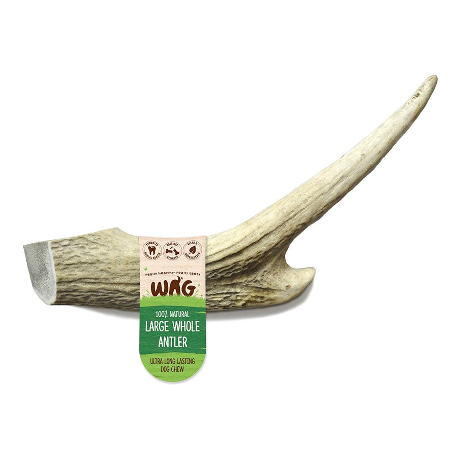 Great long lasting dog chew that helps with canine dental hygiene.