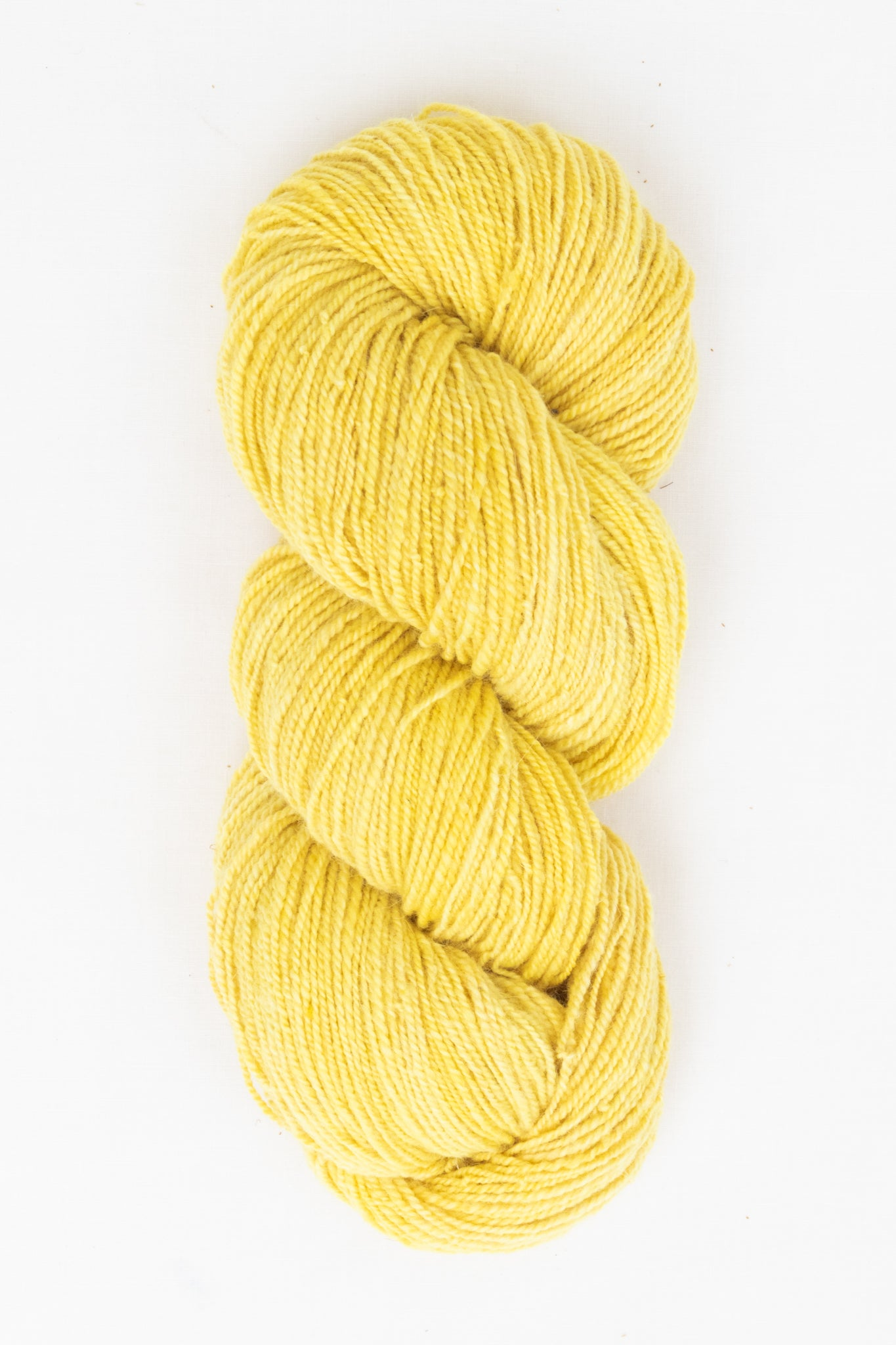 Organic Angora and Merino Blend, Fresh Cosmos