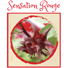 Mex Tea Herbs Tisane Aztèque - Sensation Rouge