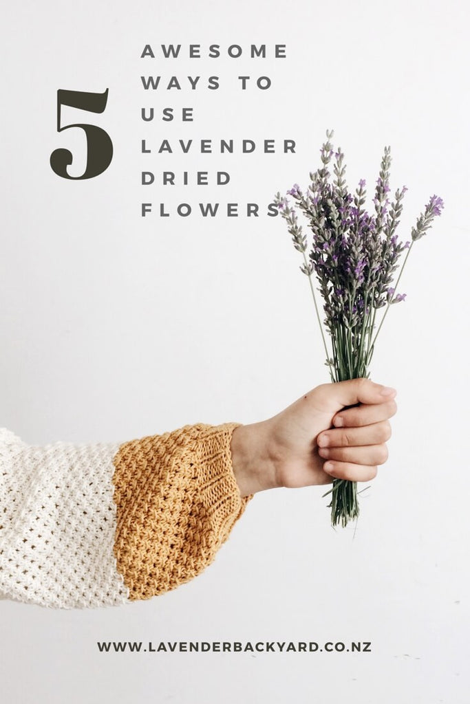 Awesome ways to use lavender dried flowers, Lavender Farm in New Zealand