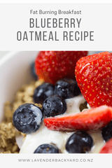 Healthy Breakfast | Fat Burning Blueberry Oatmeal Recipe
