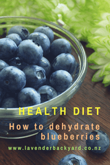 Healthy Diet | How to Dehydrate Blueberries