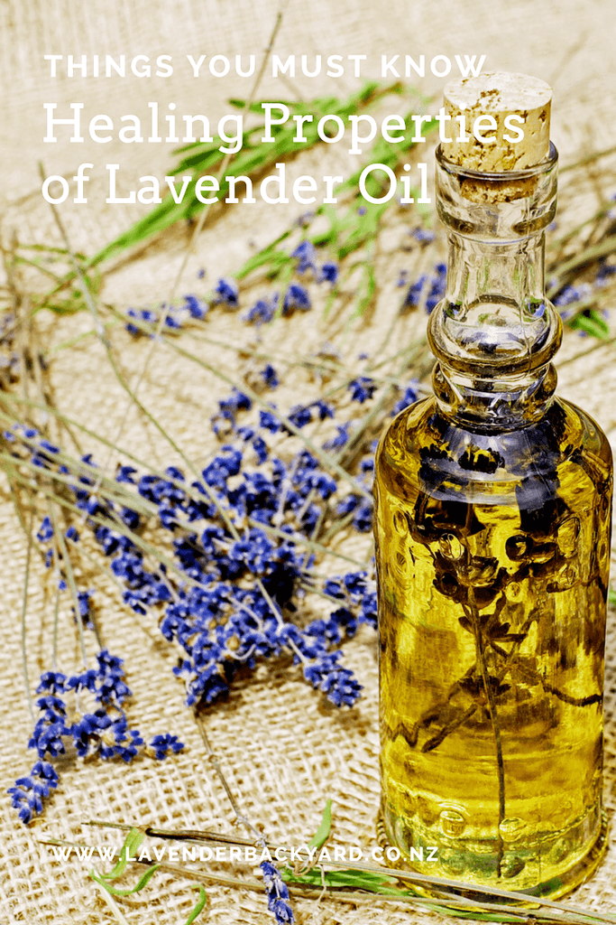 Aromatherapy  | Healing Properties of Lavender Essential Oil