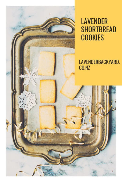 Buttery Lavender Shortbread Cookies Teatime Recipe, Lavender Backyard Garden NZ