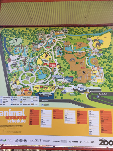 Auckland, Auckland Zoo, New Zealand, Map, Places to go, Kids, Fun