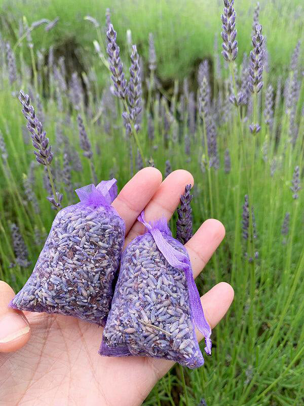 Dried Lavender Sachet, Lavender Backyard Garden