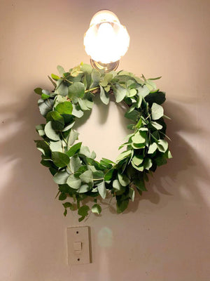 Dried Eucalyptus Wreath - Large