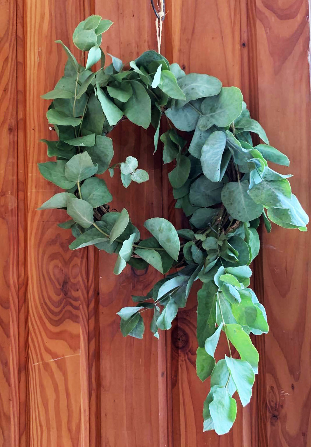 Dried Eucalyptus Wreath (S) Made to Order