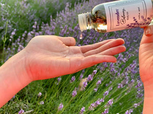 French Lavender Body Oil - Argan Oil & Avocado OIl, NZ Lavender Farm