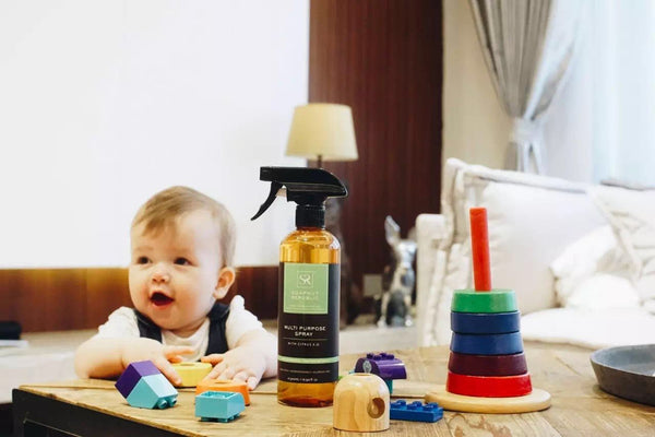 soapnut childhood multi-purpose spray